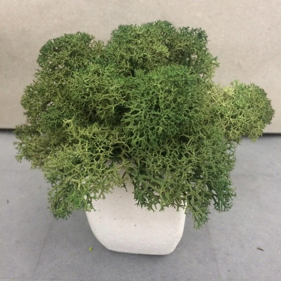 Poháre s moss moss green bielený