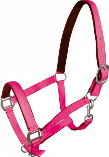 Kantar Fluo цвета для лошади пони галстук