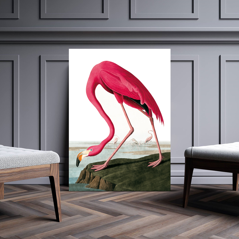 Flamingo Flamingo vintage poster 70x100 cm B1
