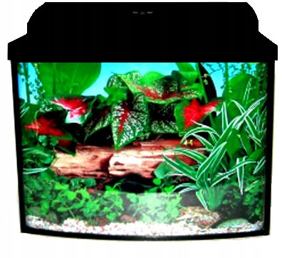 Nastaviť akvárium-sumec Jednoduché 80x35x55 154l
