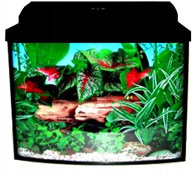 Nastaviť akvárium-sumec Jednoduché 80x35x60 168l AKCIA