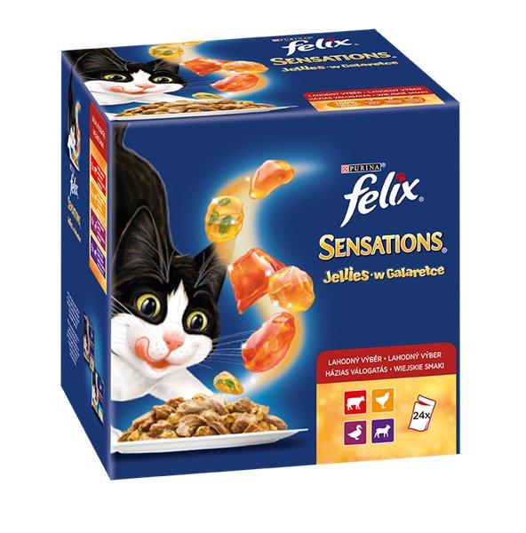 Purina Felix Sensations Wiejskie Smaki 24 x 100 g