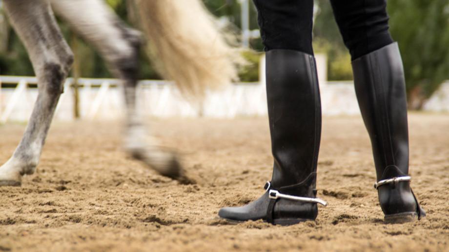 buty jeździeckie horze wysokie męskie alegro