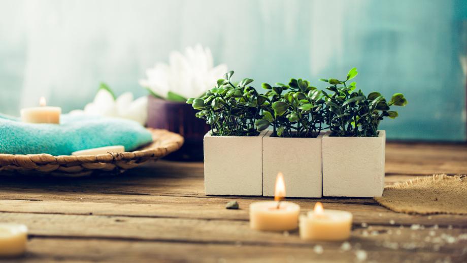 Jak Utrzymać ładny Zapach W łazience Jaki Odświeżacz