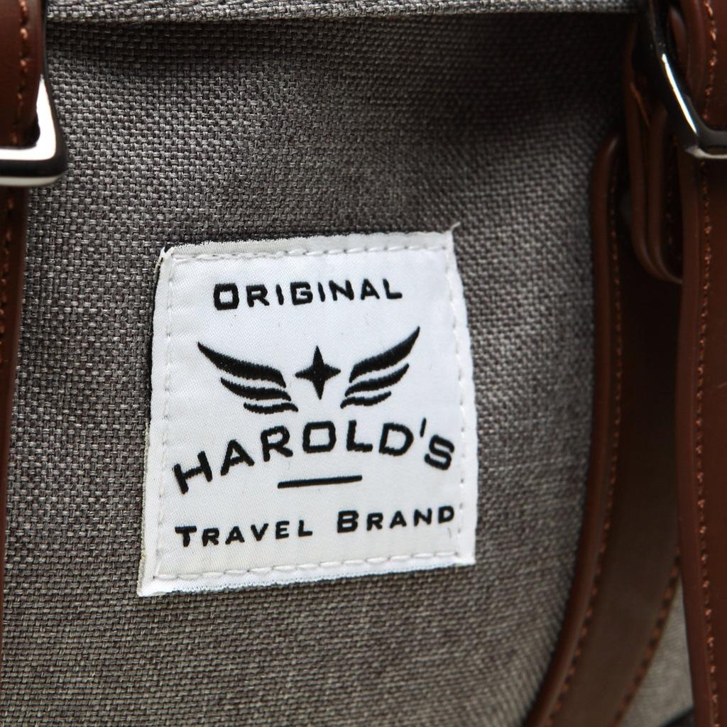 PLECAK RETRO Vintage MĘSKI Młodzieżowy HAROLDS 20L