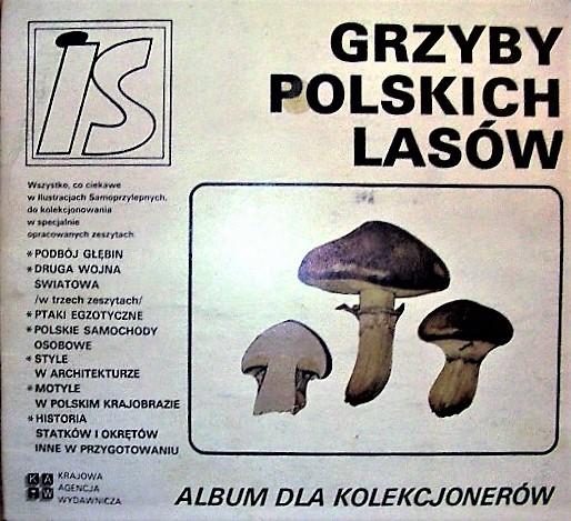 Is Album Grzyby Polskich Lasów Album Kompletny