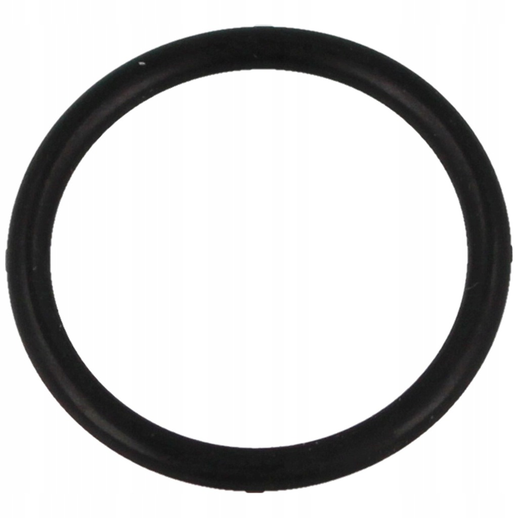 O-Ring 18*2 do pompki PCP Hatsan Hand Pump (20)