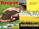 Biopaliwo rzepakowe + Rzepak uprawa rzepaku
