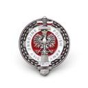 RUSSIAN ARMY ПОЛЬСКОЕ ВОЙСКО pins значок застежка доставка товаров из Польши и Allegro на русском