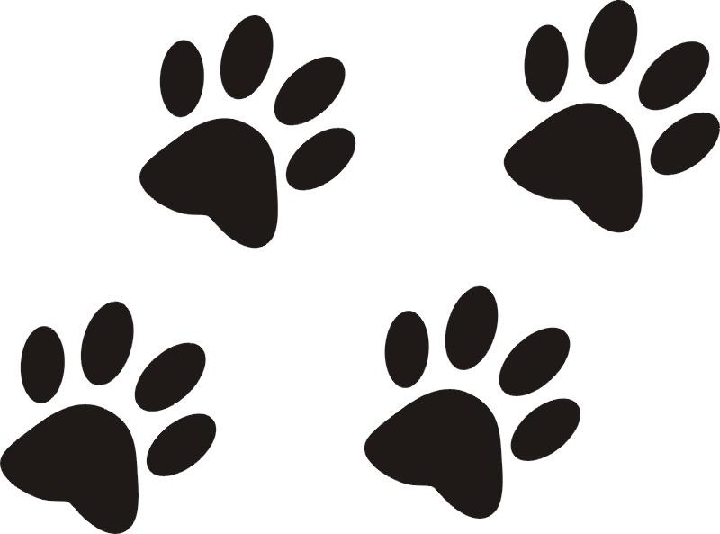 Картинки кошачьих лапок, открытки пасхой