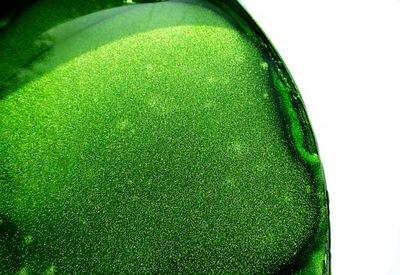 Пигмент Краситель Instagram Зеленое ЯБЛОКО 5 Г