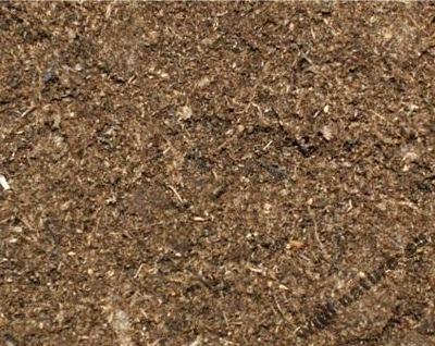 Podłoże Torf kwaśny do roślin owadożernych 500ml
