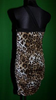 6L--- sukienka panterka FUNKY FIT - M/L