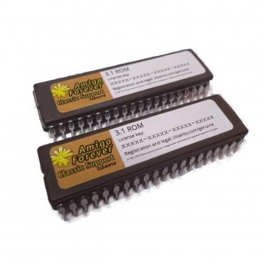 Kickstart ROM 1.3 A500/A2000 BLACK FRIDAY