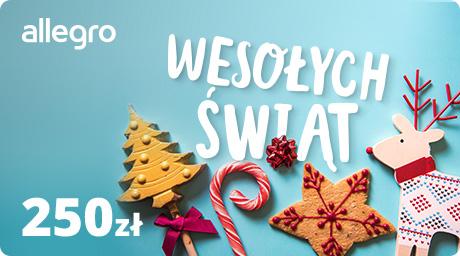 Karta Podarunkowa na Święta - 250 zł